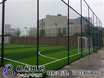 6m高足球场围网