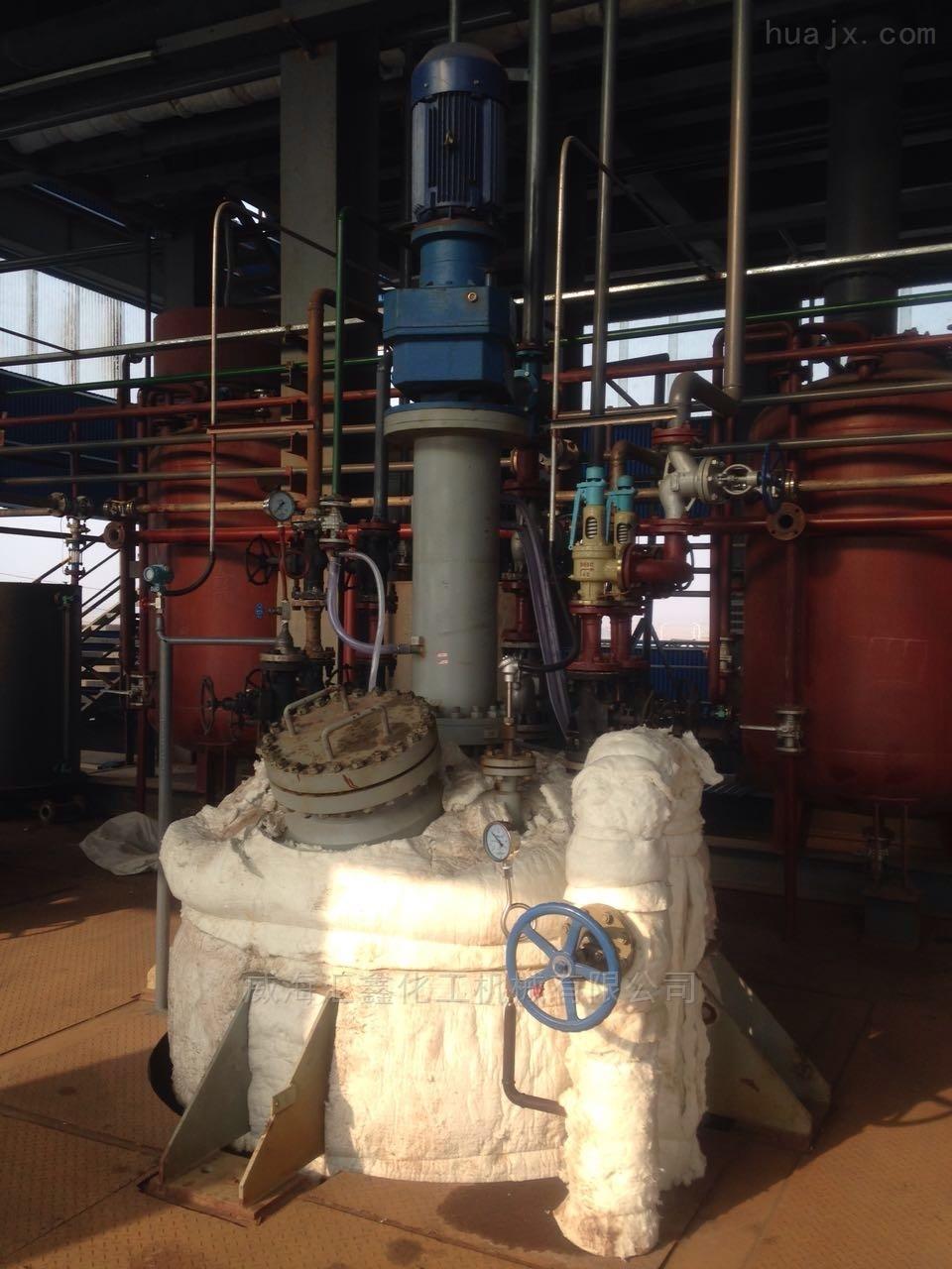 炼油用磁力高压釜,冶金高压磁力釜