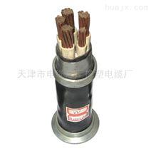 小猫牌河南局用配线电缆-HCJVV室内通信电缆