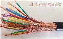 阻燃计算机电缆ZR-DJYVP3*2*1.0