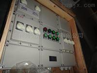 防爆照明动力配电箱带总开关