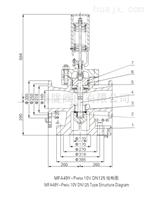 MFA49Y-Pw54 10V  高压冲量安全装置(H)
