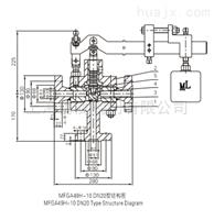 MFGA49H- 10  DN20脉冲式安全阀(W)