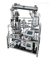 专业实验室反应釜设备
